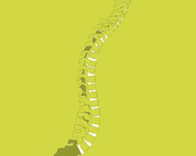Rückengesundheit